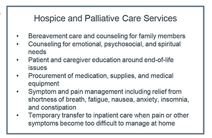 hospice and pallative care services